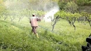 Bahçe İlaçlama